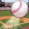 Baseball Game: The Fly Ball