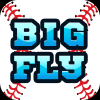 Big Fly Baseball